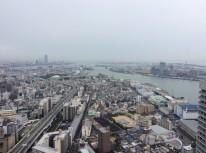 ホテル大阪ベイタワーから天保山の眺め