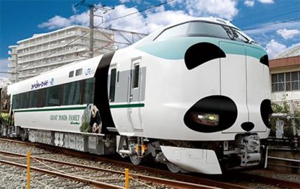 panda-kuroshio-train-wakayama